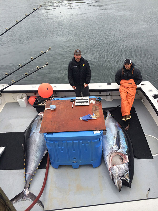 Bluefin tuna fishing charters gloucester ma cape ann for Tuna fishing boats